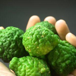 Bergamottefrüchte zur Gewinnung von Bergamotte bio (Bergamottenöl)