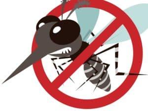 Insektaroma (ätherische Ölmischung)