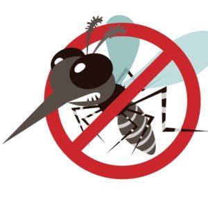 Verscheuche lästige Insekten mit Insektaroma bio Duftmischung 100% (ätherisches Öl)