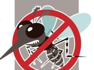 Insektaroma 60% bio (ätherische Ölmischung)
