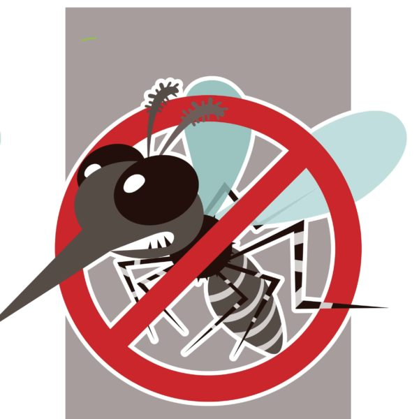 Halte Insekten natürlich fern mit Insektaroma bio Duftmischung 60% (Alkoholverdünnung)