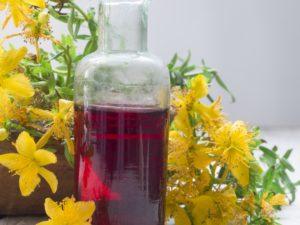 Johanniskraut mit Flasche gefüllt mit Johanniskrautöl rot bio Rotöl