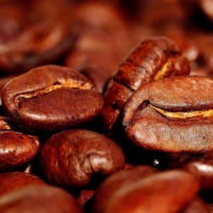 Kaffee-Bohnen zur Herstellung von Kaffee absolue 50% (Alkoholverdünnung)