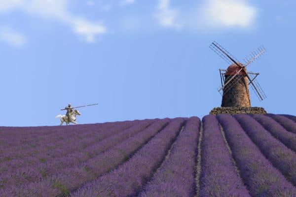 Lavendelfeld in Spanien mit Don Quijote gegen die Windmühle; Gewinnung von Lavendel Spanien bio ätherisches Öl