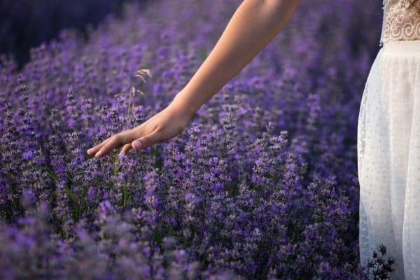 Zarte Berührung mit Airspray Lavendel bio