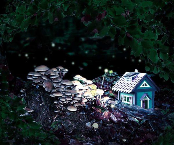 Märchen werden real mit Märchenstunde Duftmischung (ätherisches Öl)