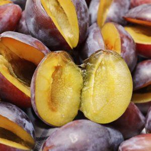 Pflaumenkerne zur Gewinnung von Pflaumenkernöl nativ bio