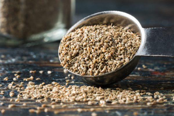 Selleriesamen auf Löffel zur Gewinnung von Selleriesamen (Sellerieöl) ätherisches Öl