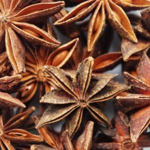 Sternanius zur Gewinnung von Sternanis (ätherisches Öl)