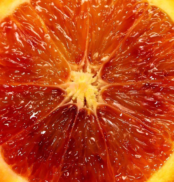 Blutorange_blood-orange zur Gewinnung von Blutorangenöl bio