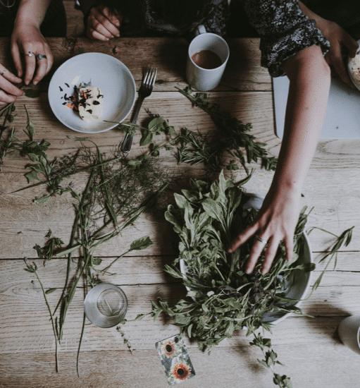 Kräuter & Pflanzen zur Herstellung ätherischer Öle