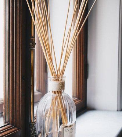 Insektenschutz mit ätherischen Ölen in Duftlampe